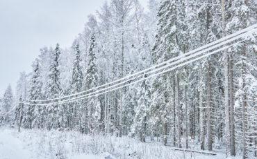 Snø på strømledninger